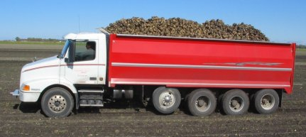 sugar-beet-truck2